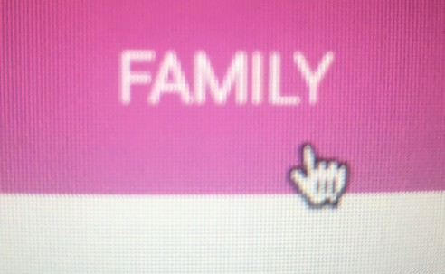 Get to know the Stronger Family website